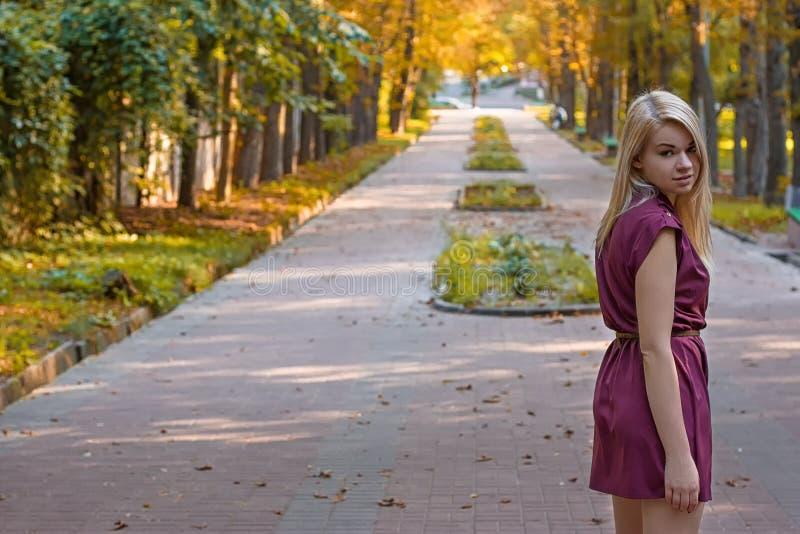 Mädchen d auf der Herbstgasse stockbilder