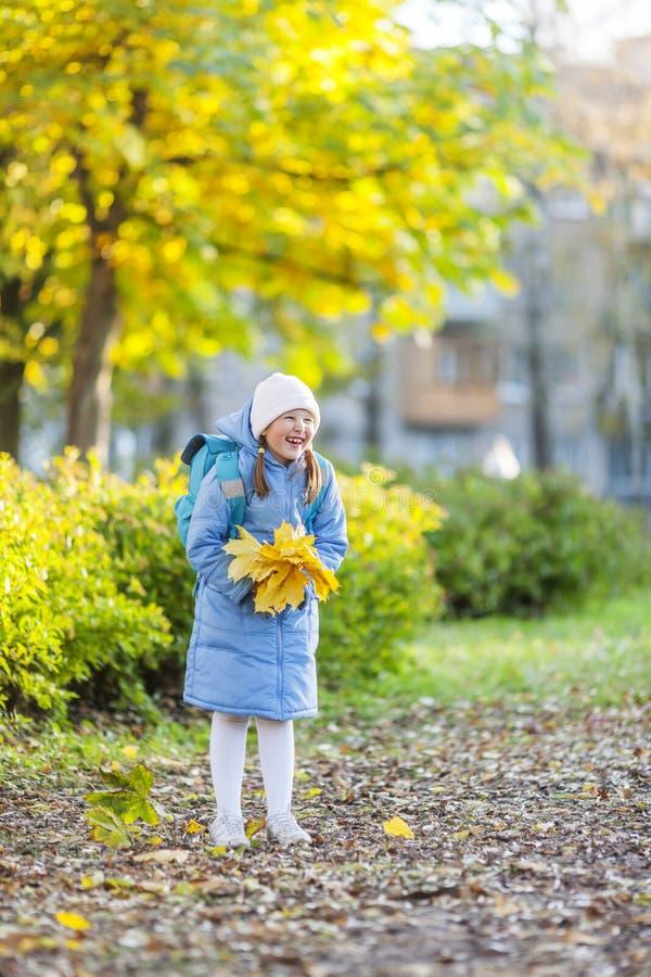 Mädchen, das Ahornblätter hält lizenzfreies stockfoto