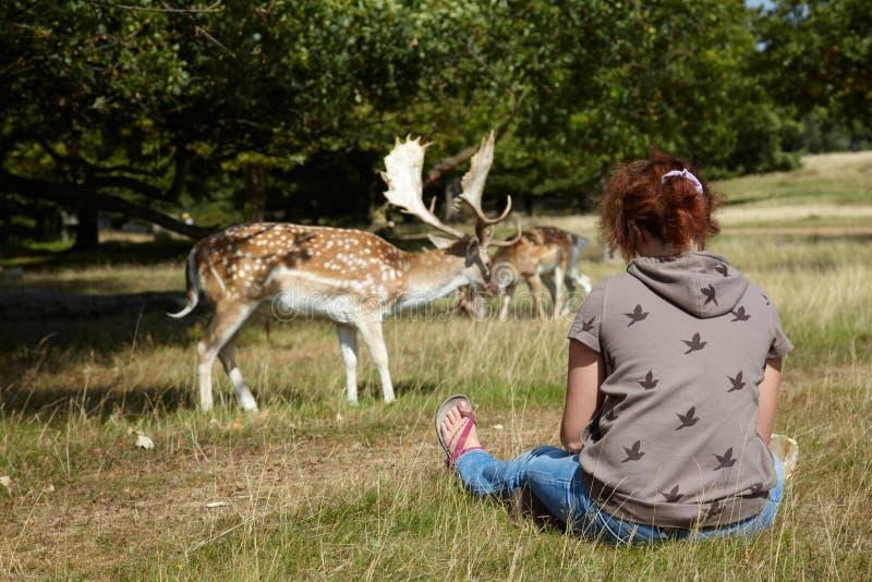Mädchen, das auf deers schaut lizenzfreies stockfoto