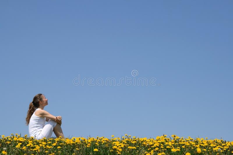 Mädchen, das auf einem Gebiet sitzt stockfotos