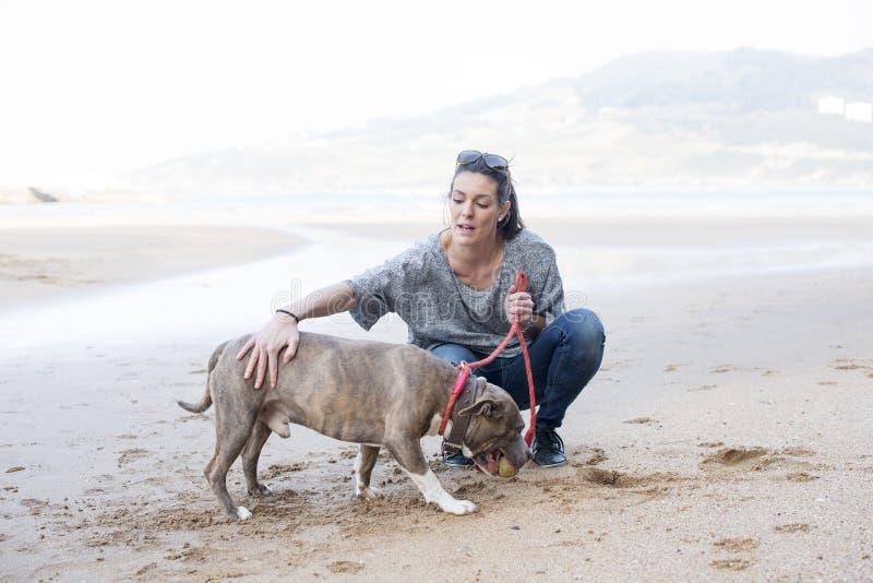 Mädchen, das den Hund im Strand ausbildet. lizenzfreie stockbilder