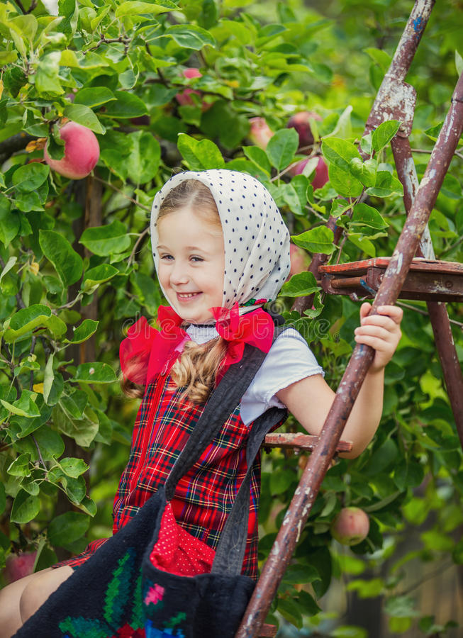 Mädchen, das die Äpfel zerreißt stockfoto