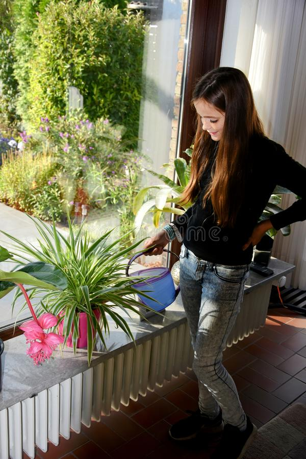Mädchen, das die Houseplants wässert lizenzfreie stockfotografie