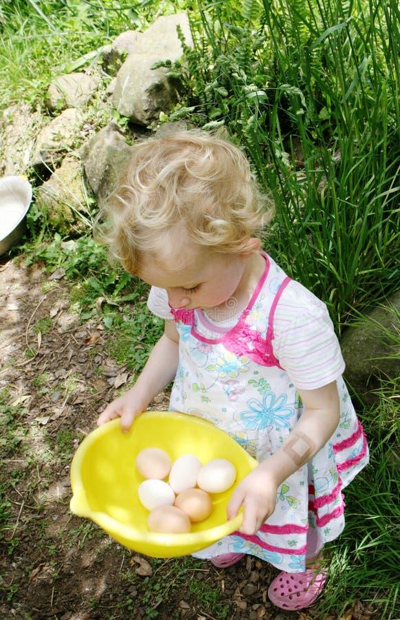 Mädchen, das Eier montiert. stockfotos