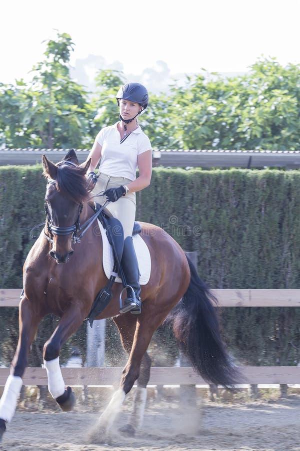 Mädchen, das ein braunes Pferd reitet lizenzfreie stockbilder