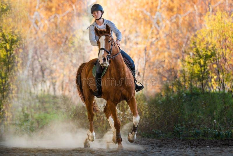 Mädchen, das ein Pferd reitet stockfoto