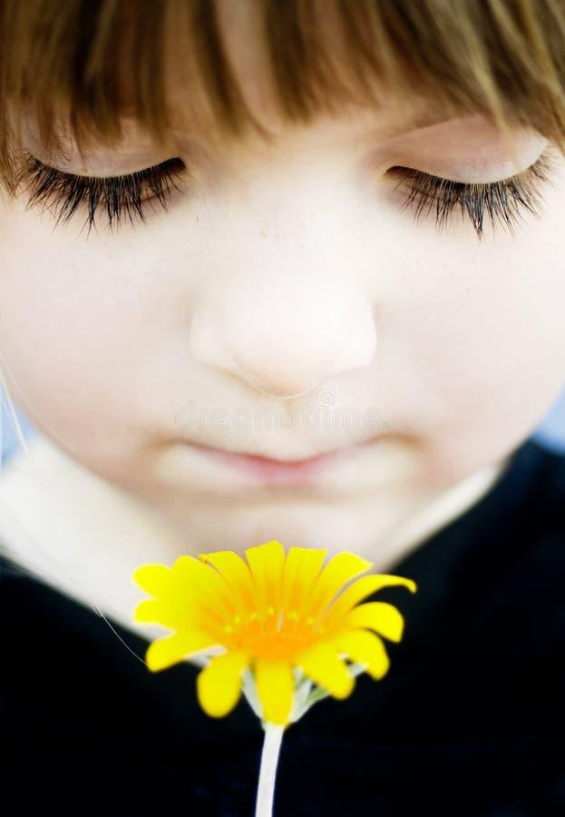 Mädchen, das eine gelbe Blume zu ihrem Gesicht anhält stockbild