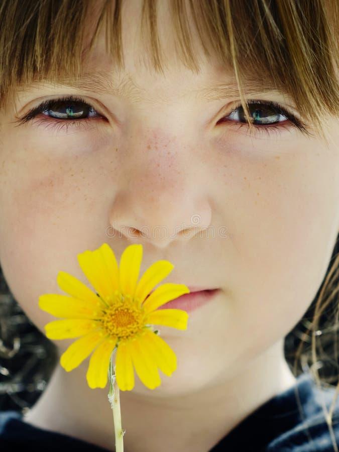 Mädchen, das eine gelbe Blume zu ihrem Gesicht anhält stockfotos