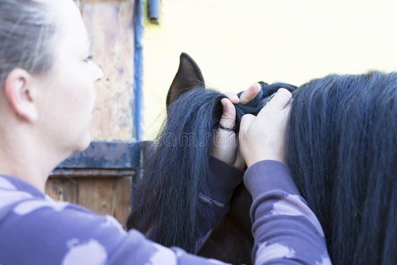 Mädchen, das eine Pferdemähne kämmt lizenzfreies stockbild