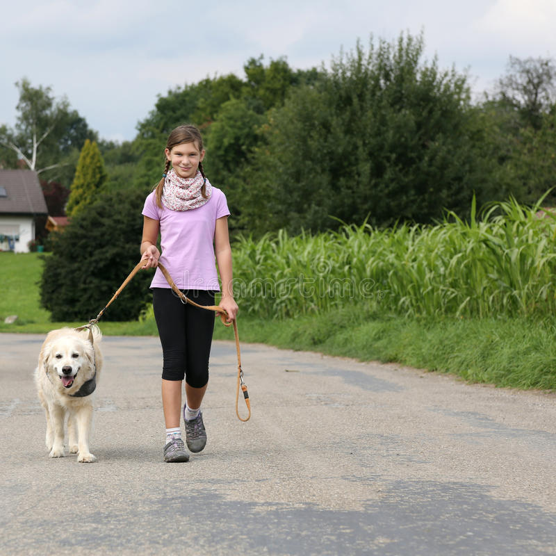 Mädchen, das einen golden retriever-Hund für einen Weg nimmt stockfotos