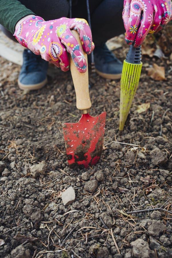 Mädchen, das Gartenarbeitwerkzeuge hält lizenzfreie stockfotografie