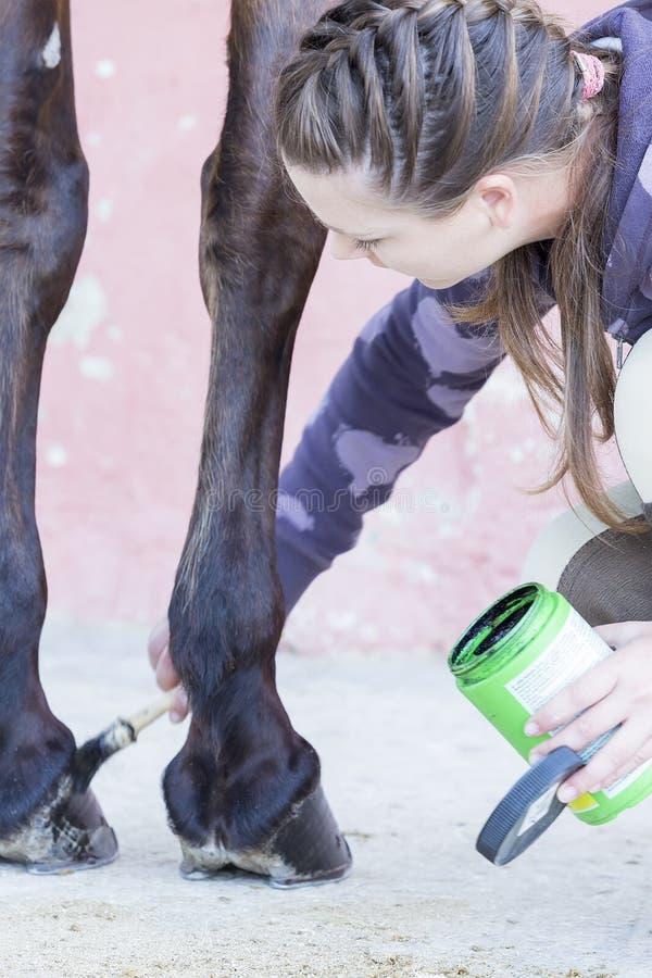 Mädchen, das ihr Pferd pflegt stockfoto