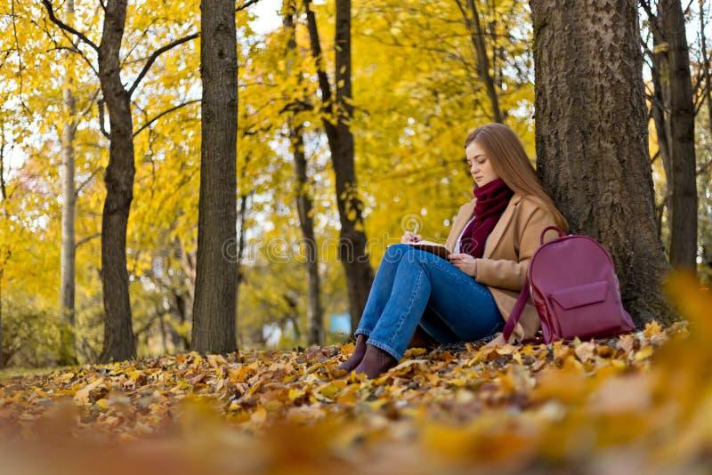 Mädchen, das im Herbst Park und dem thinkinig über ihren Lebenesprit sitzt lizenzfreies stockfoto