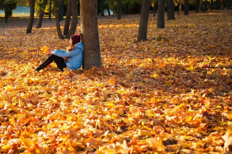 Mädchen, das im Herbstpark sitzt Schöner junger Brunette, der auf gefallenem Herbstlaub im Park sitzt stockfoto