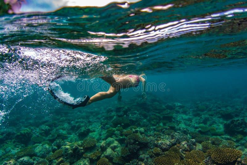 Mädchen, das im Ozean mit Schildkröten auf Hintergrund des blauen Wassers schnorchelt stockbilder