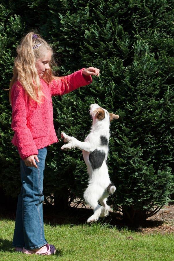 Mädchen, das mit Hund spielt lizenzfreies stockfoto