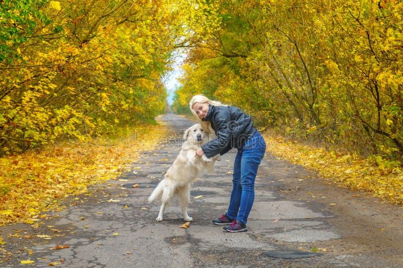 Mädchen, das mit Hundgolden retriever in Herbst Park spielt stockfotografie
