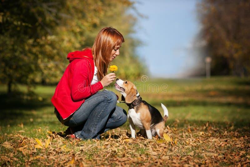 Mädchen, das mit ihrem Hund im Herbstpark spielt lizenzfreie stockfotografie