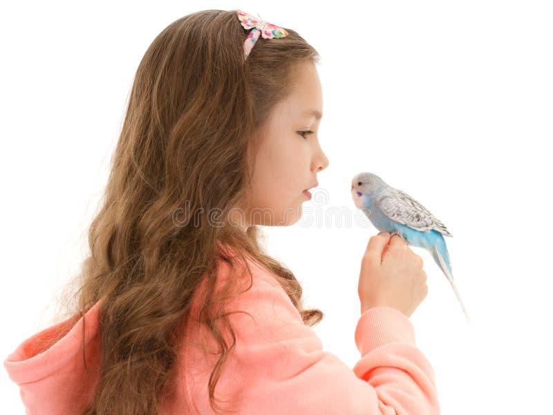 Mädchen, das mit zahmem Haustiervogelwellensittich spricht lizenzfreies stockbild