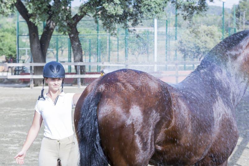 Mädchen, das Pferd badet lizenzfreie stockfotos