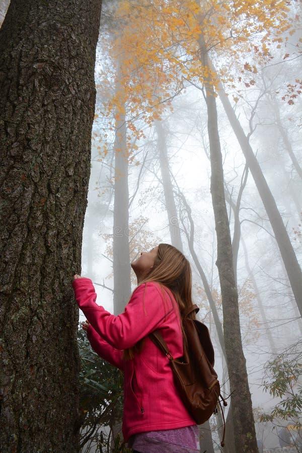 Mädchen, das Tag im nebeligen Herbstwald genießt stockbild