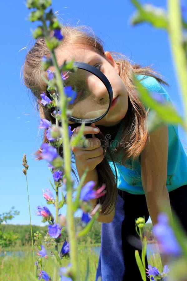 Mädchen, das Vergrößerungsglas auf der Wiese verwendet lizenzfreie stockfotografie