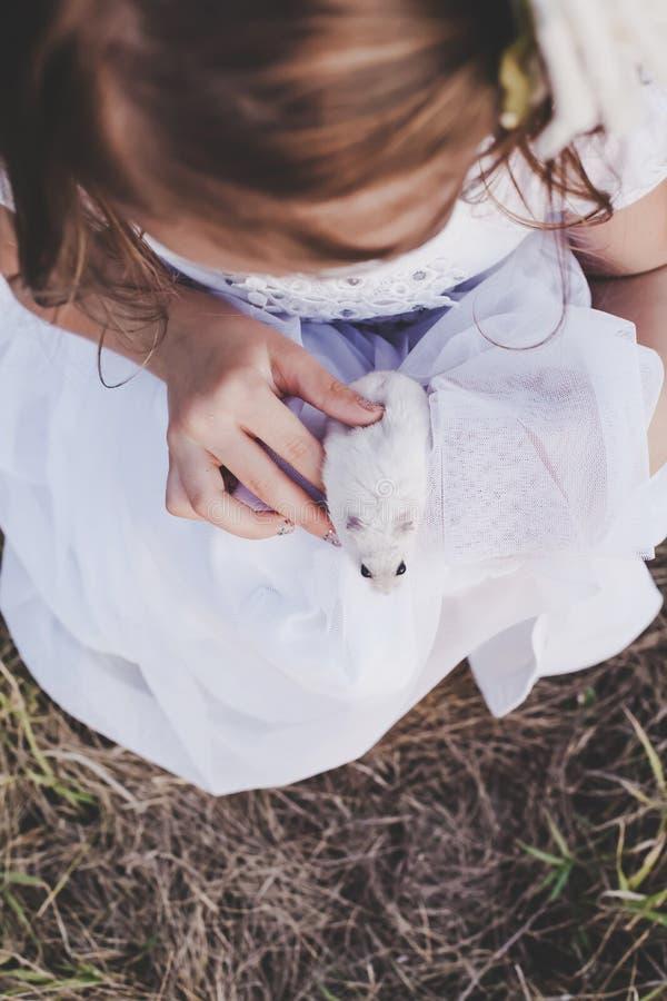Mädchen, das weißen Hamster hält - Draufsicht - Retro- Blick stockfotos