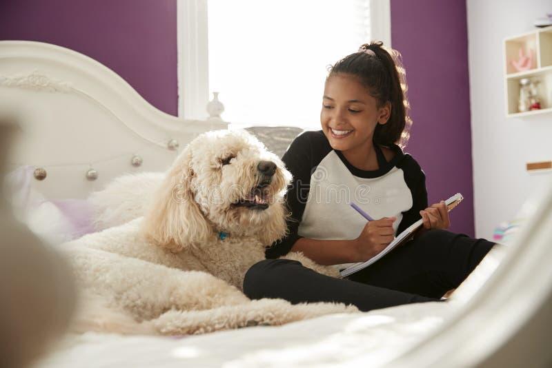Mädchen des jungen jugendlich, das Hausarbeit auf ihrem Bett mit Schoßhund tut lizenzfreie stockfotos