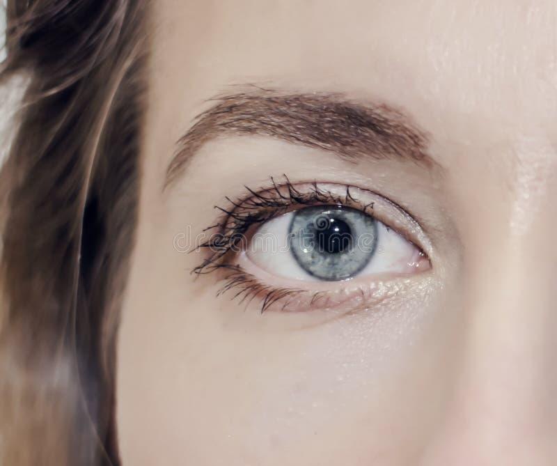 Mädchen des wachsamen Auges der grauen Farbnahaufnahme Optometriker, Optik, Anblick, Anblick, schön, Augengesundheit stockfotografie