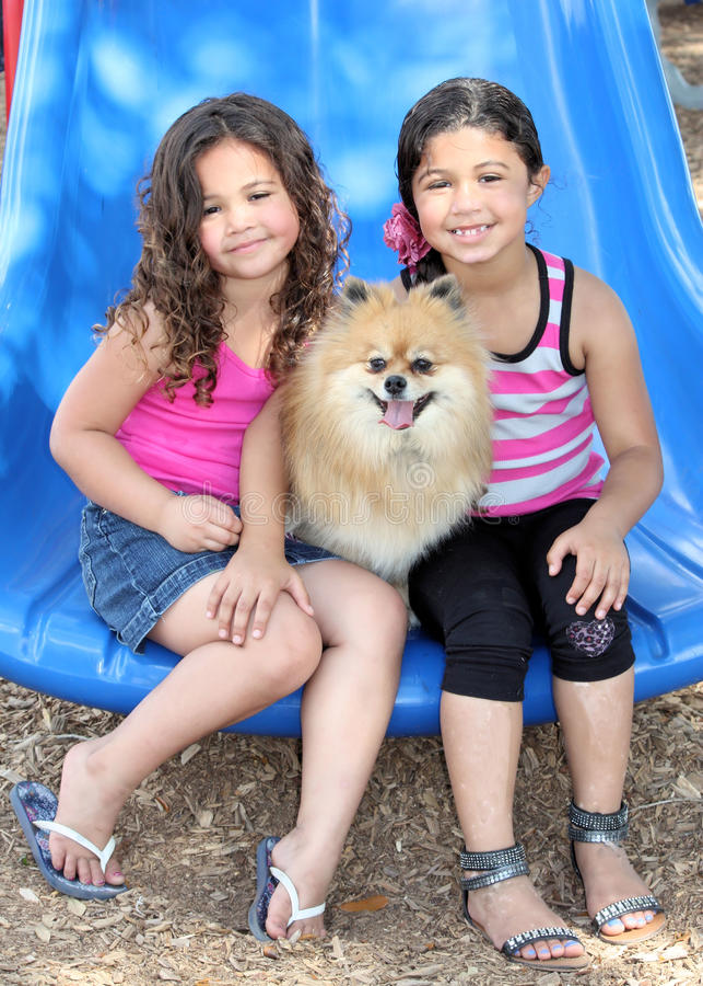 Mädchen, die mit ihren Hunden spielen lizenzfreies stockfoto