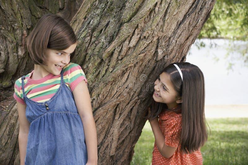 Mädchen, die Verstecken durch Baum spielen stockfoto