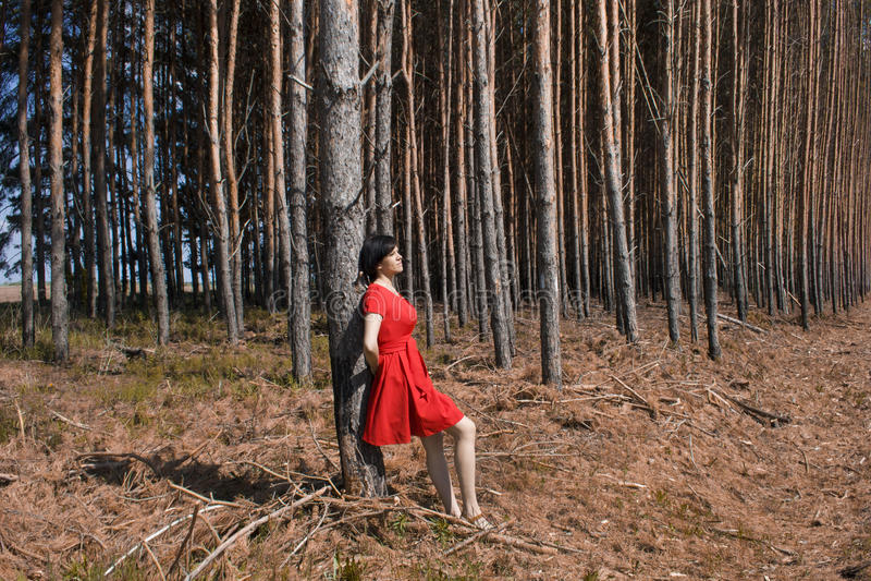 Mädchen in einem roten Kleid im Wald lizenzfreie stockbilder