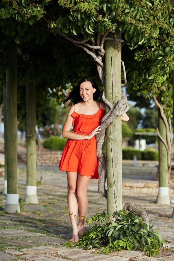 M?dchen in einem roten Kleid steht nahe einem sch?nen Baum Frau im Sonnenuntergang stockbilder