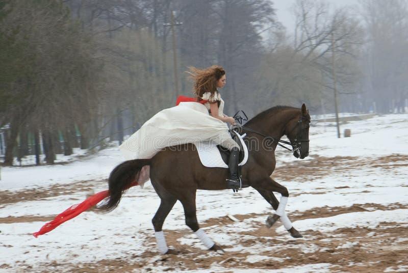 Mädchen in einem weißen Kleid auf einem Pferd lizenzfreies stockfoto