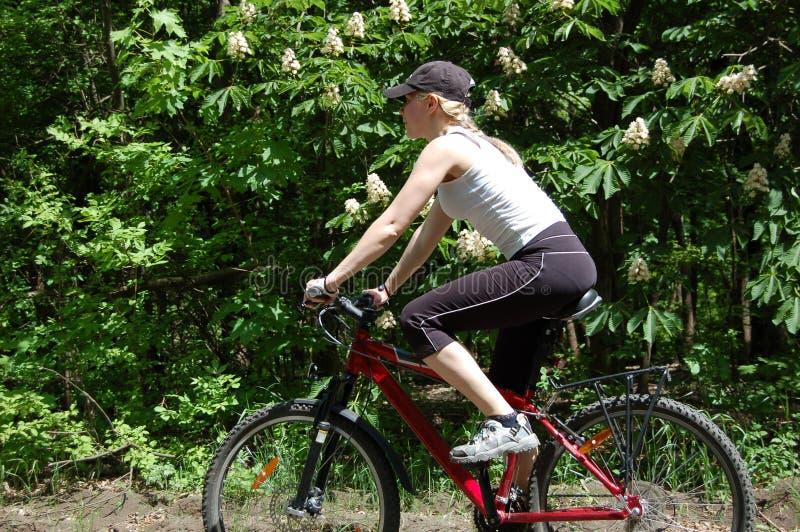 Mädchen entspannen sich das Radfahren stockfoto