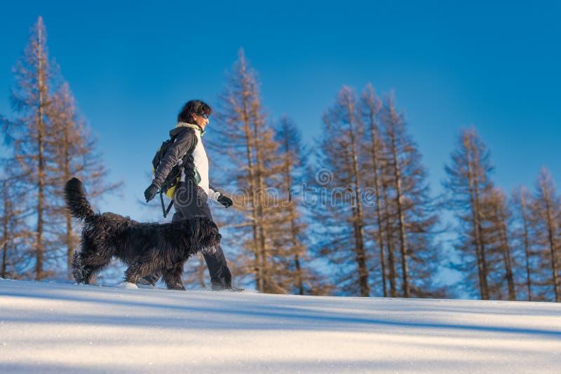 Mädchen geht mit ihrem Hund im Schnee spazieren stockfoto
