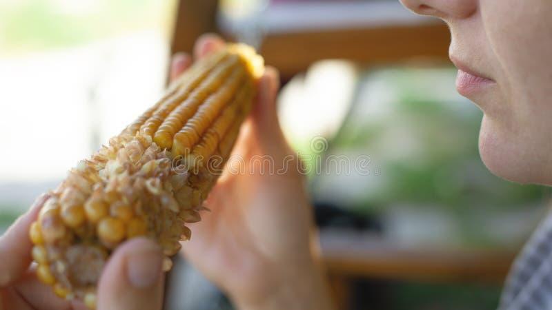 Mädchen hält in den Händen und isst süßen und saftigen gekochten Mais, eine Jahreszeit des köstlichen gelben Mais stockfoto