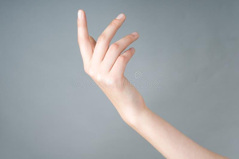Mädchen hat geöffnete Hand stockbilder