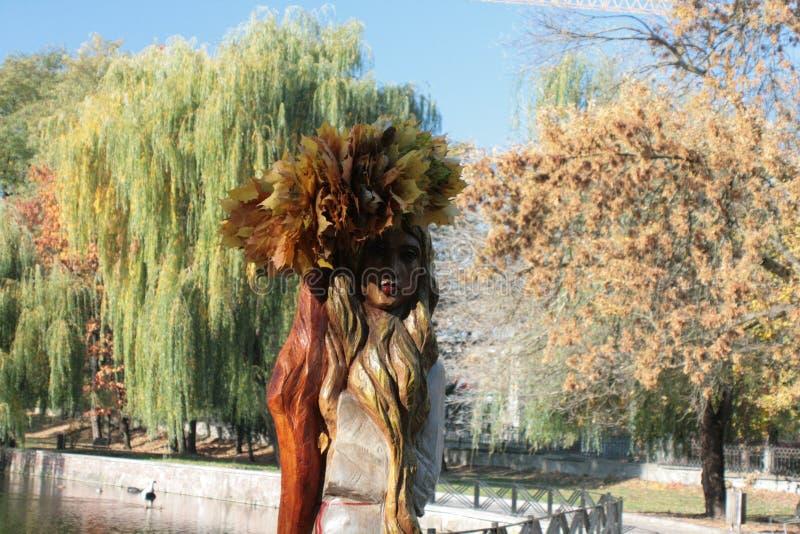 Mädchen-Herbst in einer Korolla stockbild