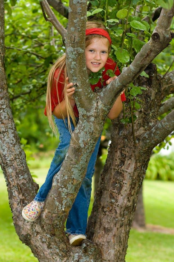 Mädchen im Baum. stockfoto