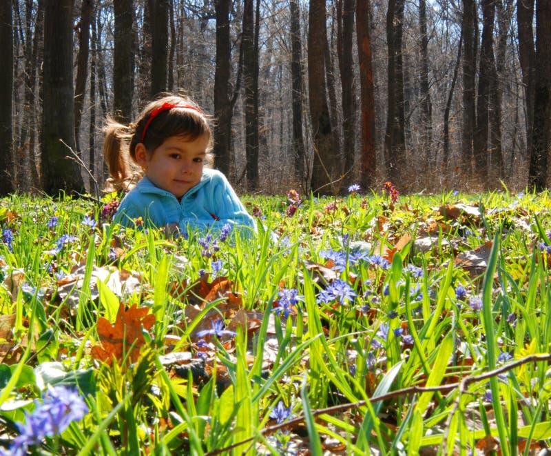 Mädchen im Bluebellholz stockfotos
