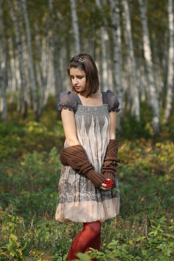 Mädchen im Herbstwald lizenzfreie stockfotografie