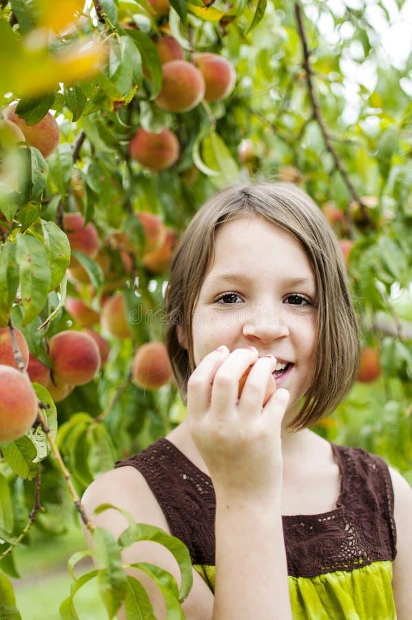 Mädchen im Pfirsichobstgarten stockbilder