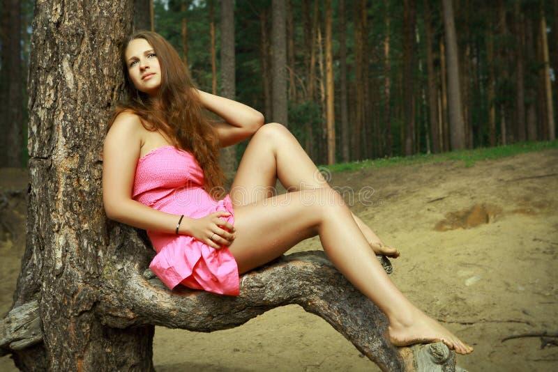 Mädchen im rosa Kleid, das auf Waldlichtung, unter Kiefern sich entspannt. stockfoto