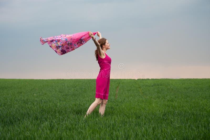 Mädchen im rosafarbenen Kleid auf dem grünen Gebiet lizenzfreie stockbilder