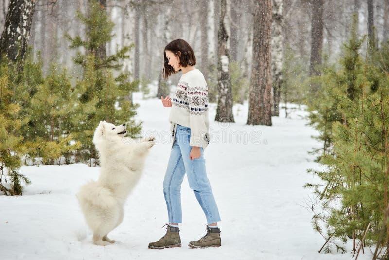 Mädchen im Winterwald gehend mit einem Hund Hinter den Paaren, Möbeln mit einem altmodischen Funk und einer Schwarzweiss-Fotograf stockfotografie