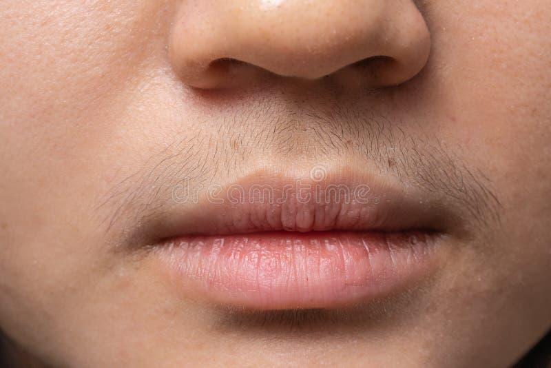 M?dchen mit dem Schnurrbart, haarige Frau am Mund, Shemale stockfoto
