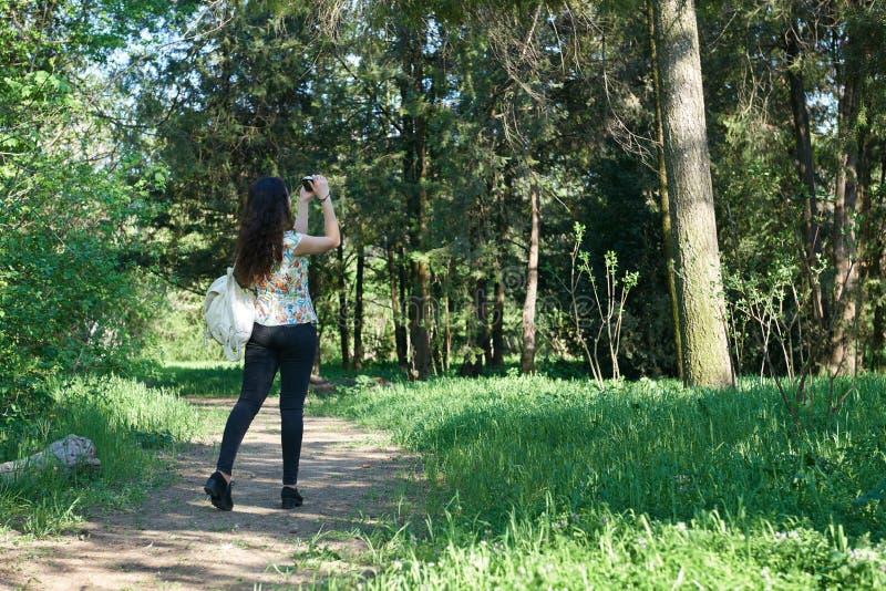 Mädchen mit der Kamera, die im Frühjahr Fotos der Natur, des schönen Waldes und der Bäume an einem sonnigen Tag macht stockbilder