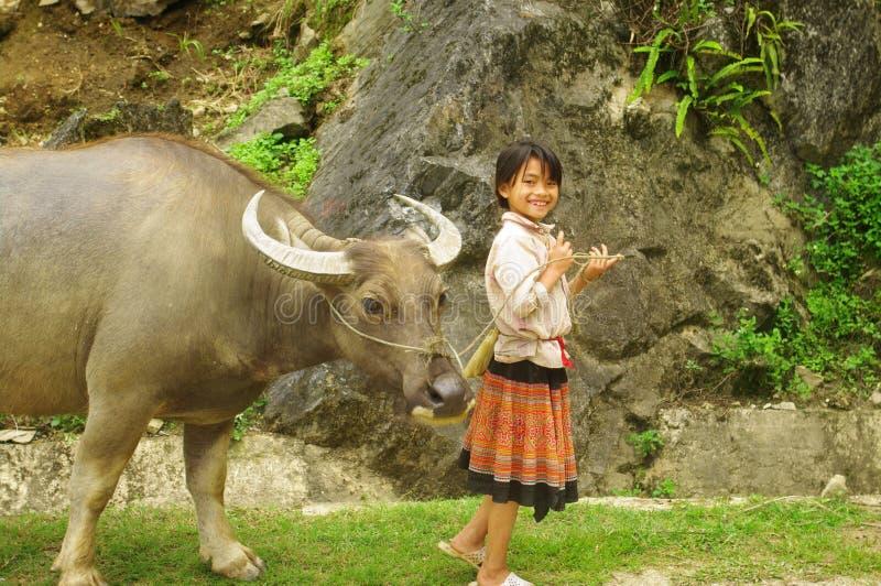 Mädchen mit einem Büffel stockfotografie