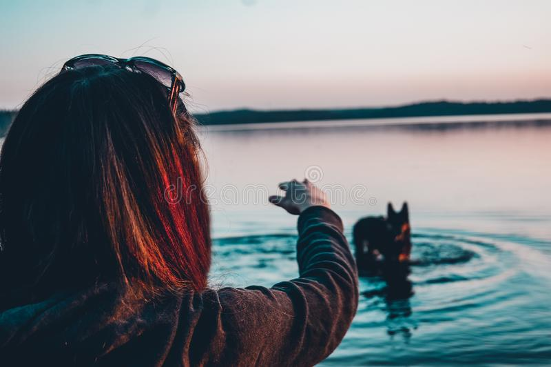 Mädchen mit einem Hund auf dem See stockbilder